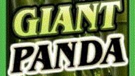 Untamed Giant Pandaslot
